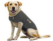 Thundershirt -pressure wrap reduces anxiety in dogs.