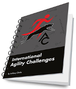 International Agility Challenges - by Anthony Clarke