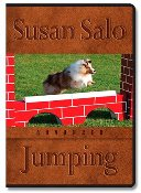 """Advanced Jumping"" DVD Set by Susan Salo"